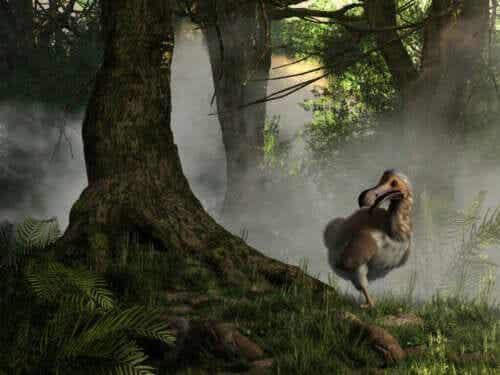 Att återskapa utdöda arter: Är det möjligt?