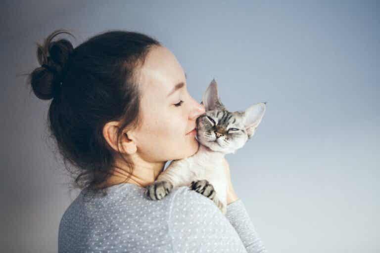 Är det bra för hälsan att leva med katter?