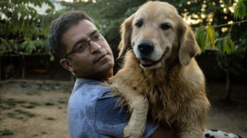 This Man Rescued 735 Stray Dogs