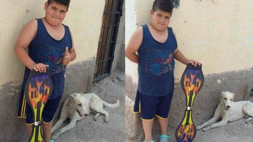Boy Sells his Skateboard to Buy Medicine for a Stray