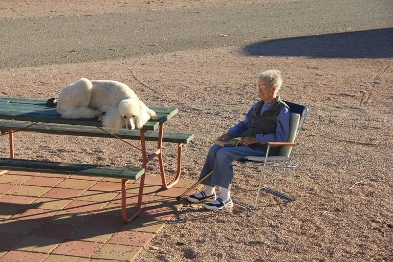 90 year old woman, Norma, travels with her dog 2