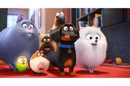 The Secret Life of Pets: Imaginative and Hilarious