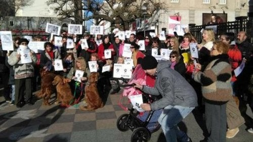 March in Defense of Animal Rights