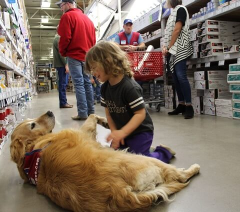 Child playing with the assistance dog