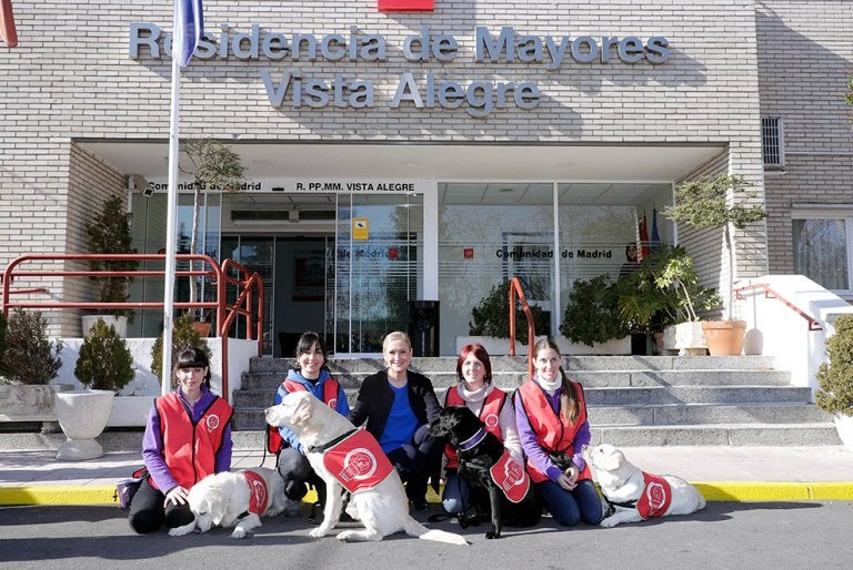 dog doctors in madrid