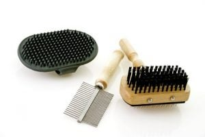 Some brushes you can use to groom your dog