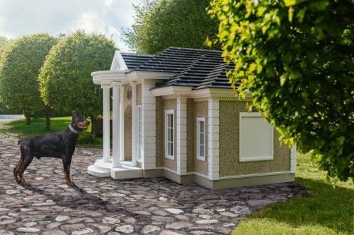Did you know there are dog mansions for dogs?