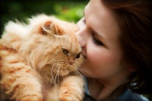 Owner cuddling their fluffy ginger cat
