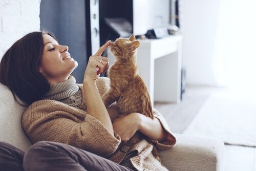 A woman seated in couch while she plays with her cat