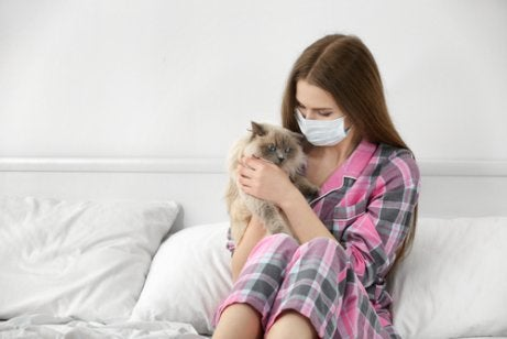 People who are allergic to cats have sensitive immune systems.