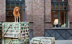 Lion Dog on a box.