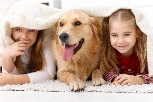 Two children with their dog.