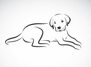 A drawing of a dog from the side.