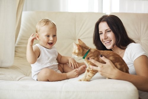 A family playing with a cat.