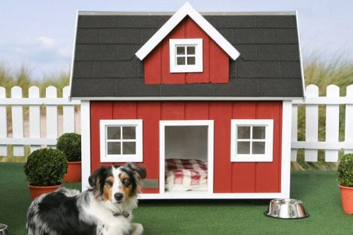 Farm dog houses.