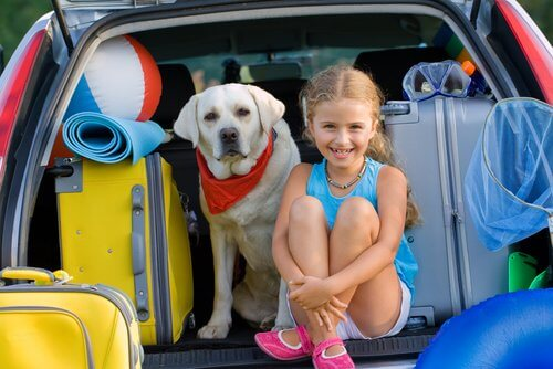 A girl with her dog in the car boot.