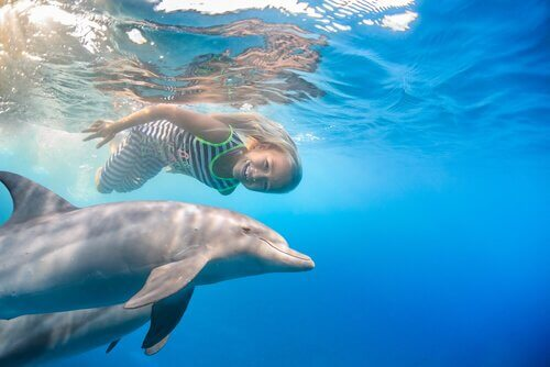 A girl swimming with dolphins.