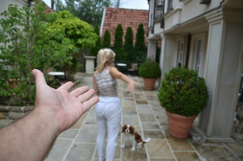 A woman, a dog, and a seemingly male hand in a patio.