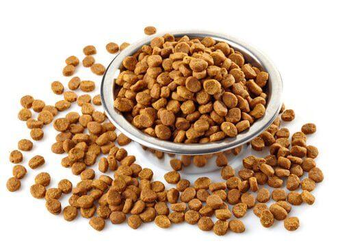 A bowl of pet food.