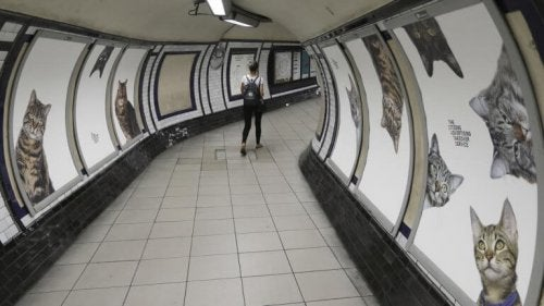 A person walking at the London Underground.