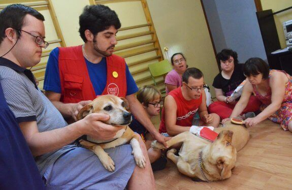 A volunteer is in a room with a couple dogs to help people with Down Syndrome.