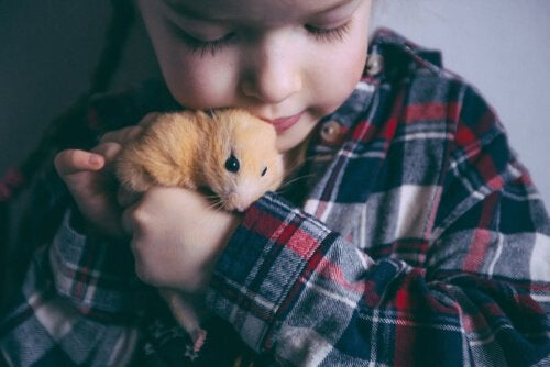 A young child is snuggling a hamster up to its chin.