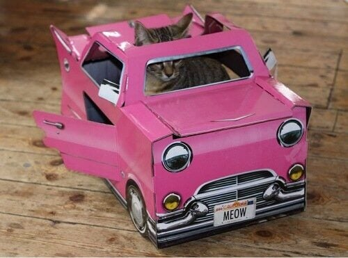 This cat is riding a pink cadillac.