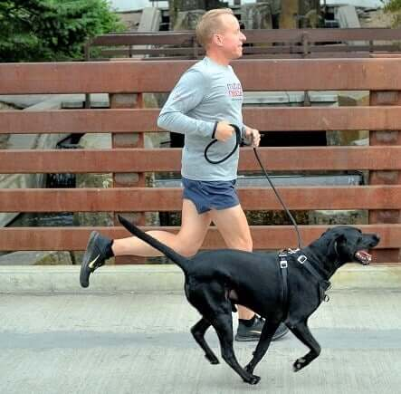 A dog and their owner running along.