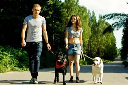 A man and a woman each walking a dog.