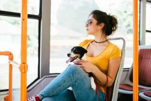 A woman sitting on a bus with a dog on her lap.