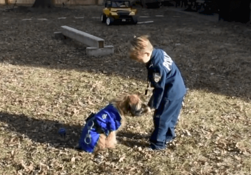 Ruby and Oliver playing in the yard.