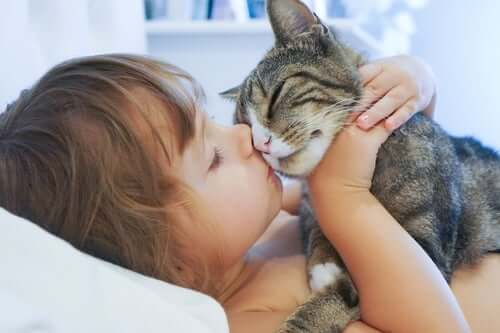 A child kissing a cat.