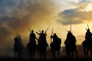 War horses on the battlefield.