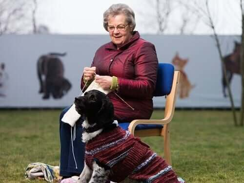 A woman knitting sweaters for homeless black dogs.