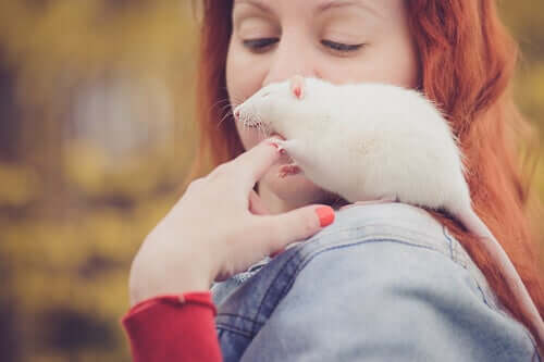 A woman petting the rat on her shoulder.