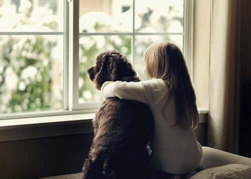 Bullying: Could Canine-Assisted Therapy Be the Answer?