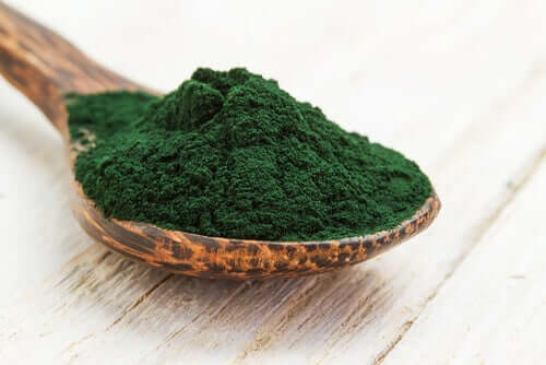 A spoonful of spirulina supplement.