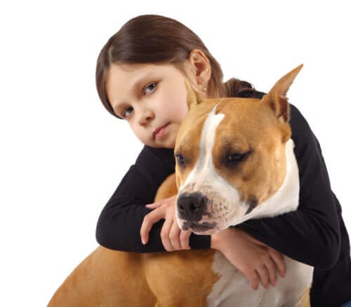 A girl with her American bully.
