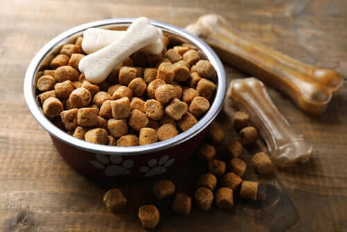 Kibble and dental sticks are good for your dog's teeth.