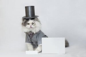 A cat in a top hat and monocle.