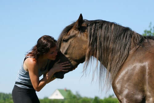 A woman hugging her horse.