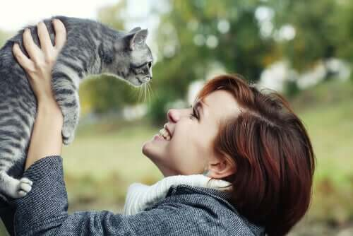 Adopting stray cats is much better than just feeding them.