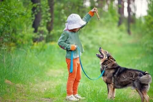 A child training a dog.