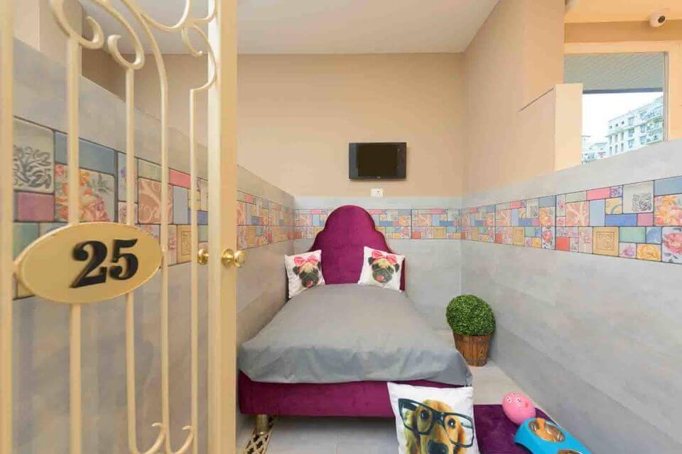 The Critterari dog hotel.