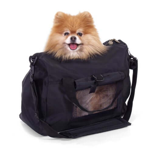 A small dog in a pet carrier.