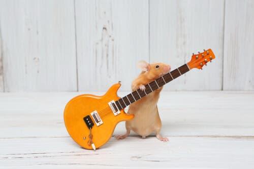 A hamster holding a miniature guitar.