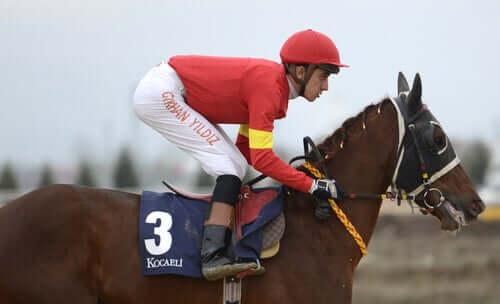 A jockey racing a horse.