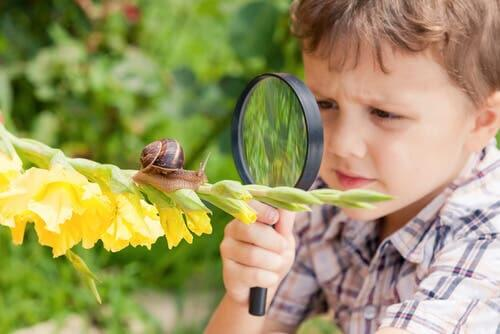 A photo of a boy inspired by snail breeding.