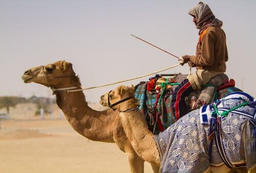 A person riding a camel in the desert.