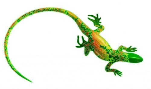 Salamanders and Lizards: Everything About These Animals